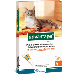 Pipeta antipulgas Advantage 40 para gatos 1-4 kg