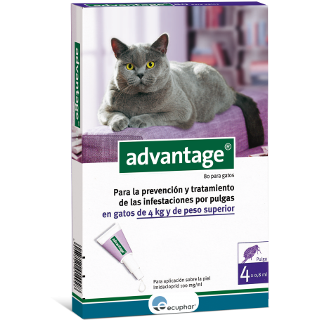 Pipeta antipulgas Advantage 40 para gatos de mas de 4 kg