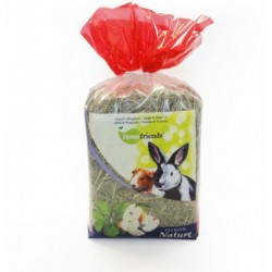 Heno Home Friends manzana / llanten 500g